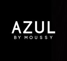 AZUL イメージ
